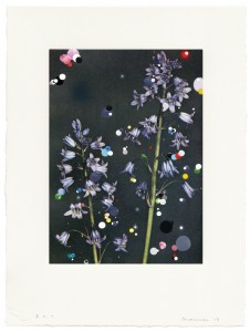 "© Sebastiaan Bremer 2015, ""Bloemen: Scilia Campanulata,"" archival inkjet print, hand painting, and Mylar confetti collage, 12"" x 8.5"" image, 18"" x 13.5"" sheet, edition of 6. Price: $1,800"