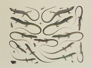 "Philip Taaffe ""Lizard Page,"" 2016. Screenprint monoprint, 25"" x 34.5"" image and sheet. Variable edition of 30. Price: $1,200"