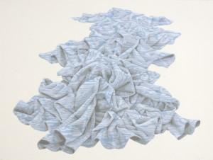 "© Gina Ruggeri, 2005. ""Woodfolds"", screenprint, 26"" x 33"" image, 28.75"" x 38"" sheet."
